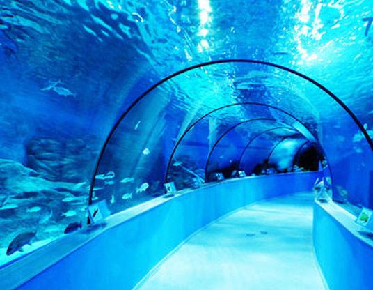 海洋馆运用乙二醇作为中央空调系统防冻液